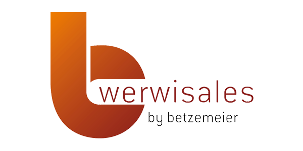 Logo Werwisales
